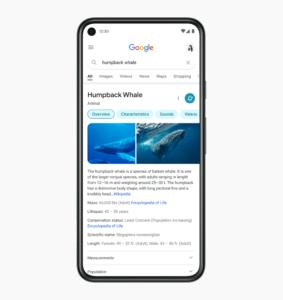 Новый дизайн мобильного поиска Гугл