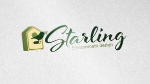 Создание фирменного стиля Starling