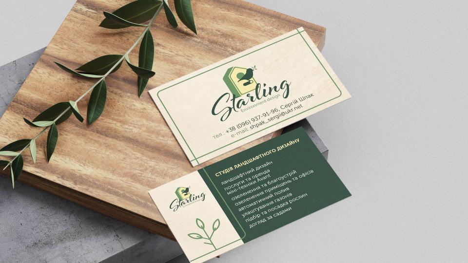 Starling - створення логотипу та айдентики