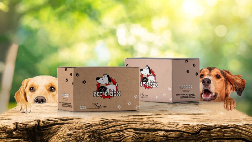 Pet's Box - створення логотипу та лендингу