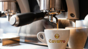 создание логотипа Cavarro